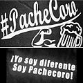 El Pachecoro.jpg