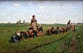 Emile Claus - Vlaswieden in Vlaanderen.JPG