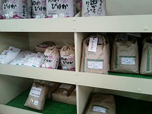 Eniwa, Hokkaido - Eniwa grows many types of rice, including Yume Pirika and Fukkurinko. (pictured)