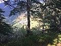 Erbonne, da sentiero Alpe Sella-Scudellate 2.jpg
