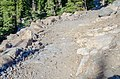 Eroded section of Bumpass Hell Trail (46519ba1-c019-46fa-a221-497f262954e6).jpg