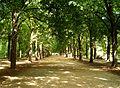 Erzsébet park3.jpg