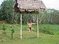 Escuela de Lanceros-Fuerte Amazonas II - panoramio.jpg