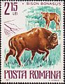 European bison on stamps Romania 1977.jpg
