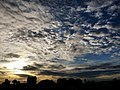 Evening skies.jpg