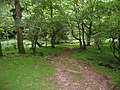 Exmoor , East Water and Footpath - geograph.org.uk - 1212245.jpg