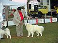 Expo2005 sabado 122.JPG