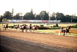 Express Gaxe wins Swedish Trotting Derby 1977.jpg