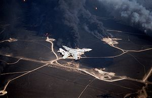 F-14A VF-114 flies over burning oil wells in Kuwait 1991.JPEG