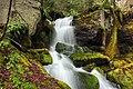 Fall Creek (Revisited) (5) (11660297206).jpg