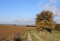 Falmignoul Countryside R03.jpg