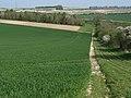 Farmland, Litchfield - geograph.org.uk - 404222.jpg