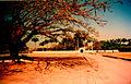 Fazenda Quilombo.jpg