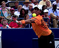 Fernando Verdasco 2009 US Open.jpg