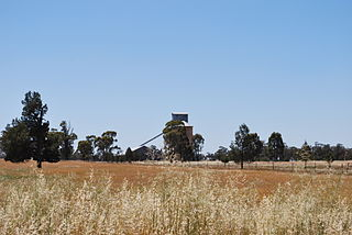 Ferndale, New South Wales Town in New South Wales, Australia