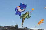 Festival of the Winds (7960185100).jpg