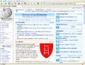 Firefox1.0.8Screen.PNG