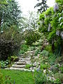 Flickr - brewbooks - Stairs from middle to top level of our back garden.jpg