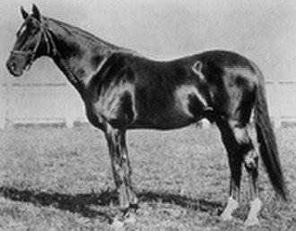 1880 Kentucky Derby - 1880 winner Fonso.