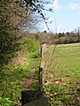 Footpath along a field boundary - geograph.org.uk - 155434.jpg