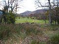 Footpath from Keswick to Ormathwaite - geograph.org.uk - 608335.jpg