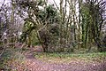 Footpath leading from Boxer's Lake to Worlds End, Enfield - geograph.org.uk - 732893.jpg