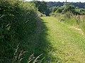 Footpath to Bake Farm - geograph.org.uk - 1367819.jpg