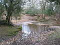 Ford over Highland Water, New Forest - geograph.org.uk - 150613.jpg