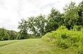 Forest Park, Springfield, MA 01108, USA - panoramio (43).jpg