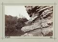 Fotografi av Ventnor. Isle of Wight, England - Hallwylska museet - 106691.tif