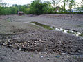 FoxRiverWisconsinRiverbed.jpg