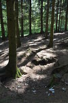 Foxholes - Bois Jacques - Bastogne - 05.jpg