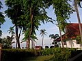 From Room 423Frangipani Langkawi Resort ^ Spa Hotel - panoramio.jpg