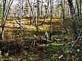 G. Miass, Chelyabinskaya oblast', Russia - panoramio (74).jpg