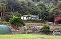 GREEN MOUNTAIN SETTLEMENT - ASCENSION ISLAND.jpg