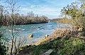 Garonne river in Saubens (2).jpg