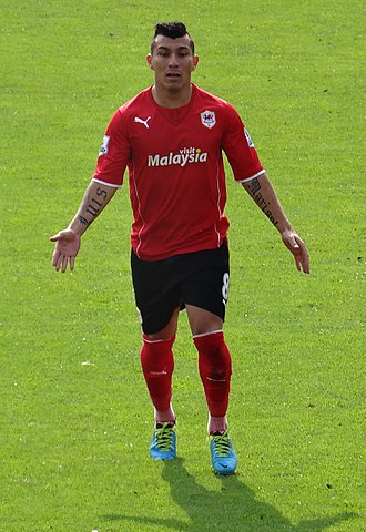 Cardiff set club records when buying Gary Medel in 2013 and selling him a year later Gary Medel Cardiff City.jpg