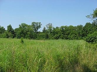 Milford, Ohio - Gatch site