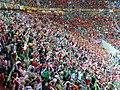 Gdansk PGE Arena ESP-IRE Euro 2012 13.jpg
