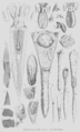 Geology and Mineralogy considered with reference to Natural Theology, plate 44'.png