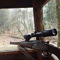 Gewehr Ansitz.jpg