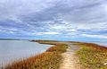 Gfp-texas-galveston-island-state-park-lakeshore.jpg