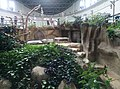 Giant Panda Conservation Centre in Zoo Negara Malaysia 2021 (25).jpg