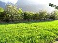 Gilgit Baltistan view.jpg