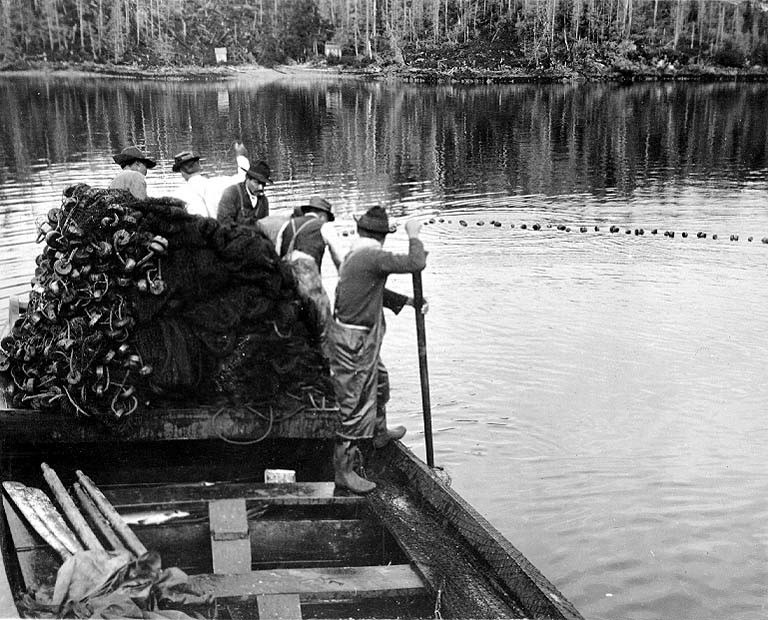 Gillnetters at work, Washington, nd (COBB 183).jpeg