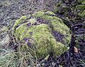 Glacial erratic stone at Townend of Threepwood.jpg