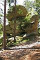 Gletschermühle bei Lembach 2009-06 01 NÖ-Naturdenkmal ZT-127.jpg