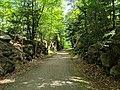 Goffstown Rail Trail, Goffstown NH.jpg