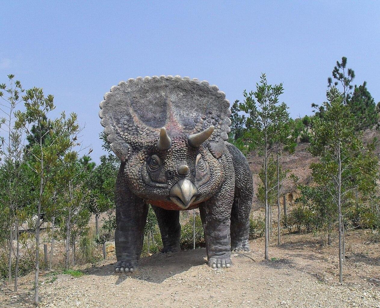 Image Result For Dinosoaur Types Color