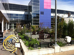 Google - Google Mountain View campus garden